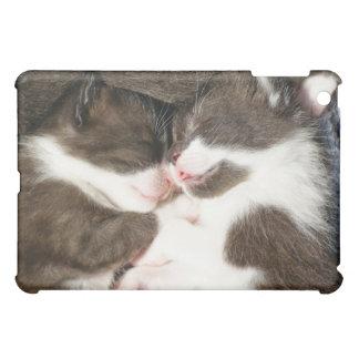 Baby buddies, cute kittens iPad case