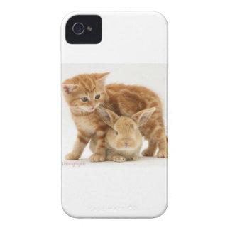 Baby Bunny and Orange Kitten Meet Case-Mate iPhone 4 Cases