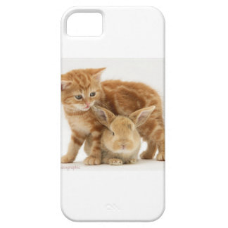 Baby Bunny and Orange Kitten Meet iPhone 5 Cases