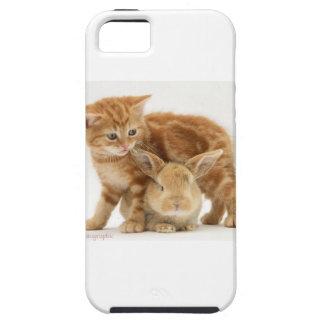 Baby Bunny and Orange Kitten Meet Tough iPhone 5 Case