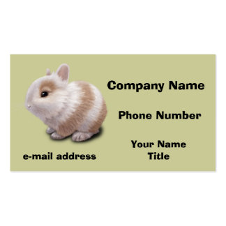 Baby Bunny Business Card Template