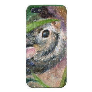 Baby Bunny Hiding iPhone 5 Case