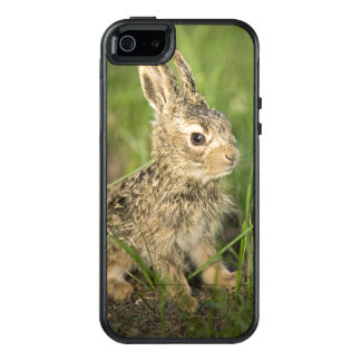 Baby Bunny In Grass OtterBox iPhone 5/5s/SE Case