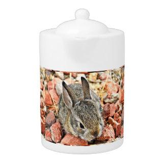 Baby Bunny in Pink Tea Pot