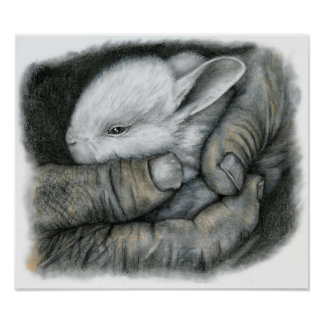 BABY BUNNY POSTER