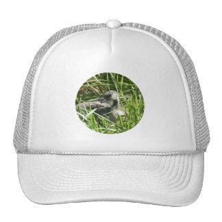 Baby Canada Goose Hats