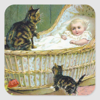 Baby cat and kitten sticker