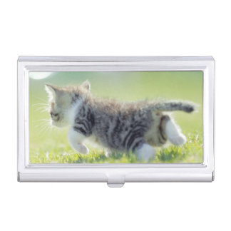 Baby cat running on grass field. business card holder