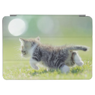 Baby cat running on grass field. iPad air cover