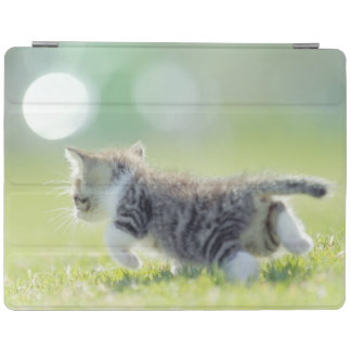 Baby cat running on grass field. iPad cover