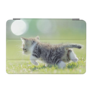 Baby cat running on grass field. iPad mini cover