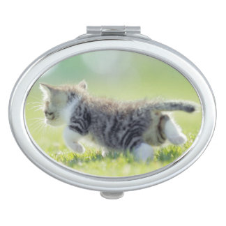 Baby cat running on grass field. makeup mirrors