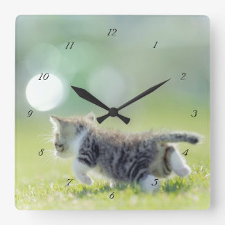 Baby cat running on grass field. square wall clock