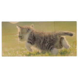 Baby cat running on grass field. wood USB flash drive
