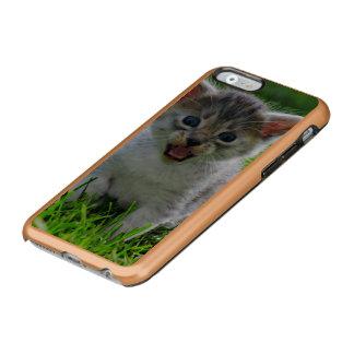 Baby cat incipio feather® shine iPhone 6 case