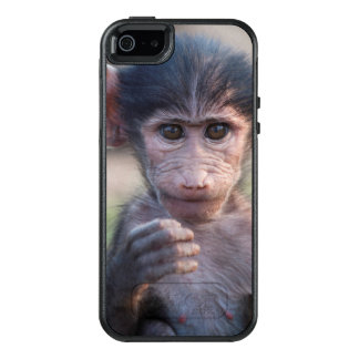 Baby Chacma Baboon (Southern Africa) OtterBox iPhone 5/5s/SE Case