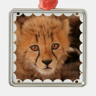 Baby Cheetah Ornament