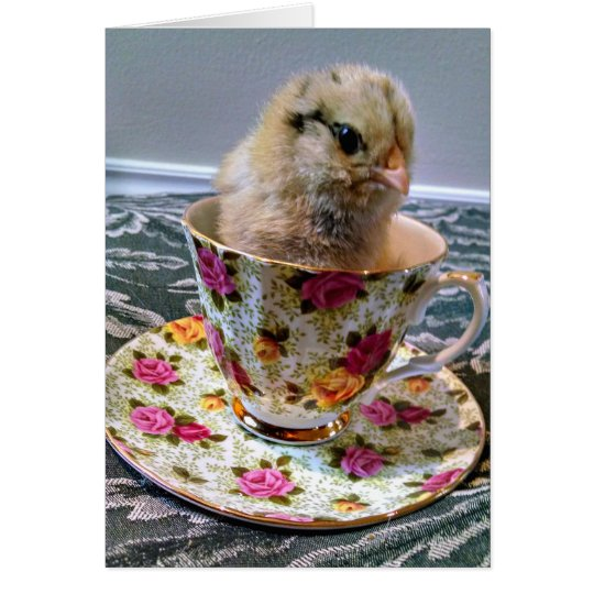 Baby Chick in a Tea Cup Greeting Card
