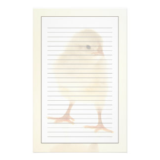 Baby chicken stationery paper