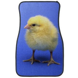 Baby chicken. floor mat