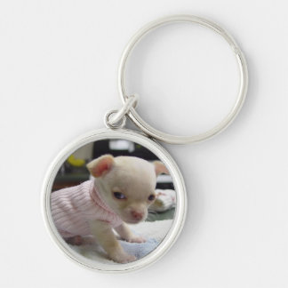 Baby Chihuahua Pink Sweater Keychain