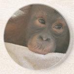 Baby Chimp Coasters