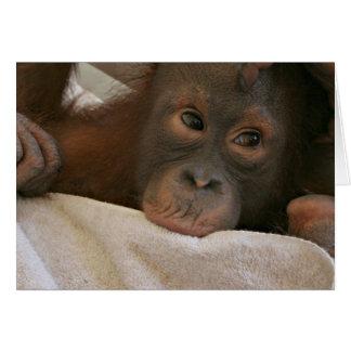 Baby Chimp Greeting Card