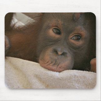 Baby Chimp Mousepad