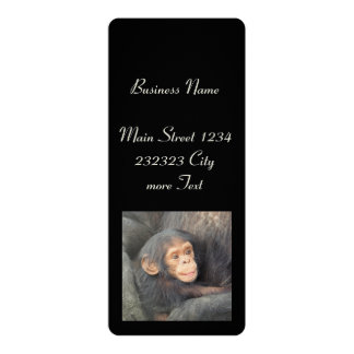 baby chimpanzeeh 10 cm x 24 cm invitation card