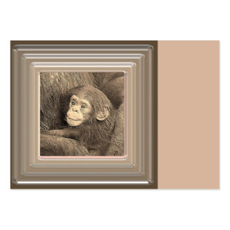 baby chimpanzeeh,retro look pack of chubby business cards
