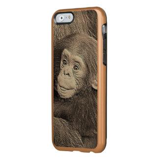 baby chimpanzeeh,retro look incipio feather® shine iPhone 6 case