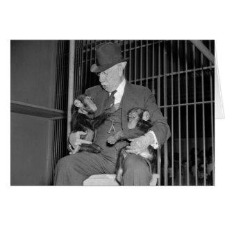 Baby Chimpanzees, 1938 Card