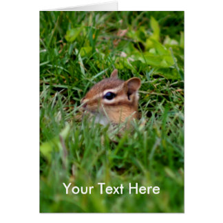 Baby Chipmunk Animal Photo Card