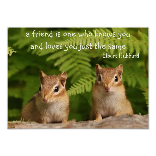 Baby Chipmunk Friends Quote Poster