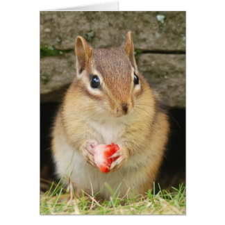 baby chipmunk with strawberry greeting card