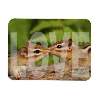 Baby Chipmunks Love Design Rectangular Photo Magnet