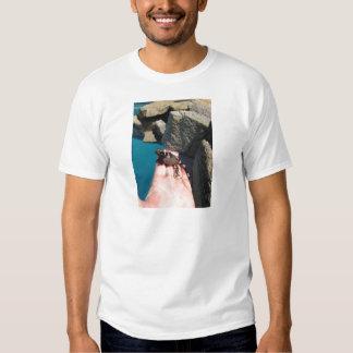 Baby Chuckwala Tee Shirts