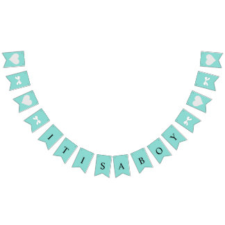 BABY & CO It's A Boy Party Bunting Banner