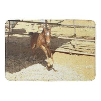 Baby Colt Horse Animal Ranch Farm 4-H Bath Mat Bath Mats