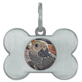 Baby Congo African Grey Parrot Pet Name Tag