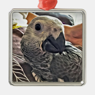 Baby Congo African Grey Parrot Silver-Colored Square Decoration