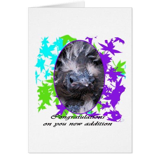 Baby Congratulations: Congratulations baby Card