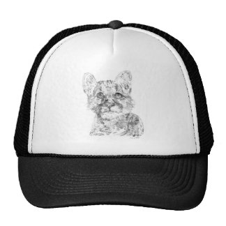 Baby Cougar Drawing on a Hat