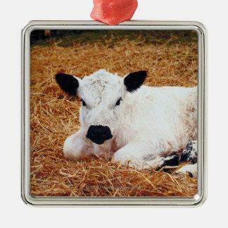 Baby Cow, Calf Silver-Colored Square Decoration