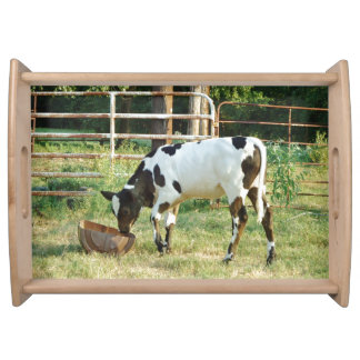 Baby Cow Food Trays