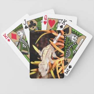 Baby Crested Gecko Poker Deck