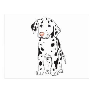Baby Dalmatian 2 Postcard