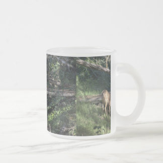 Baby Deer In The Forest Mugs