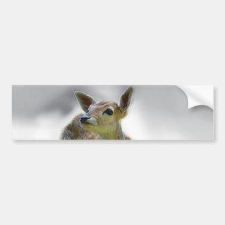 Baby deer's curiosity bumper sticker