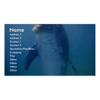Baby dolphin, La Havana Aquarium, Cuba Business Card Templates